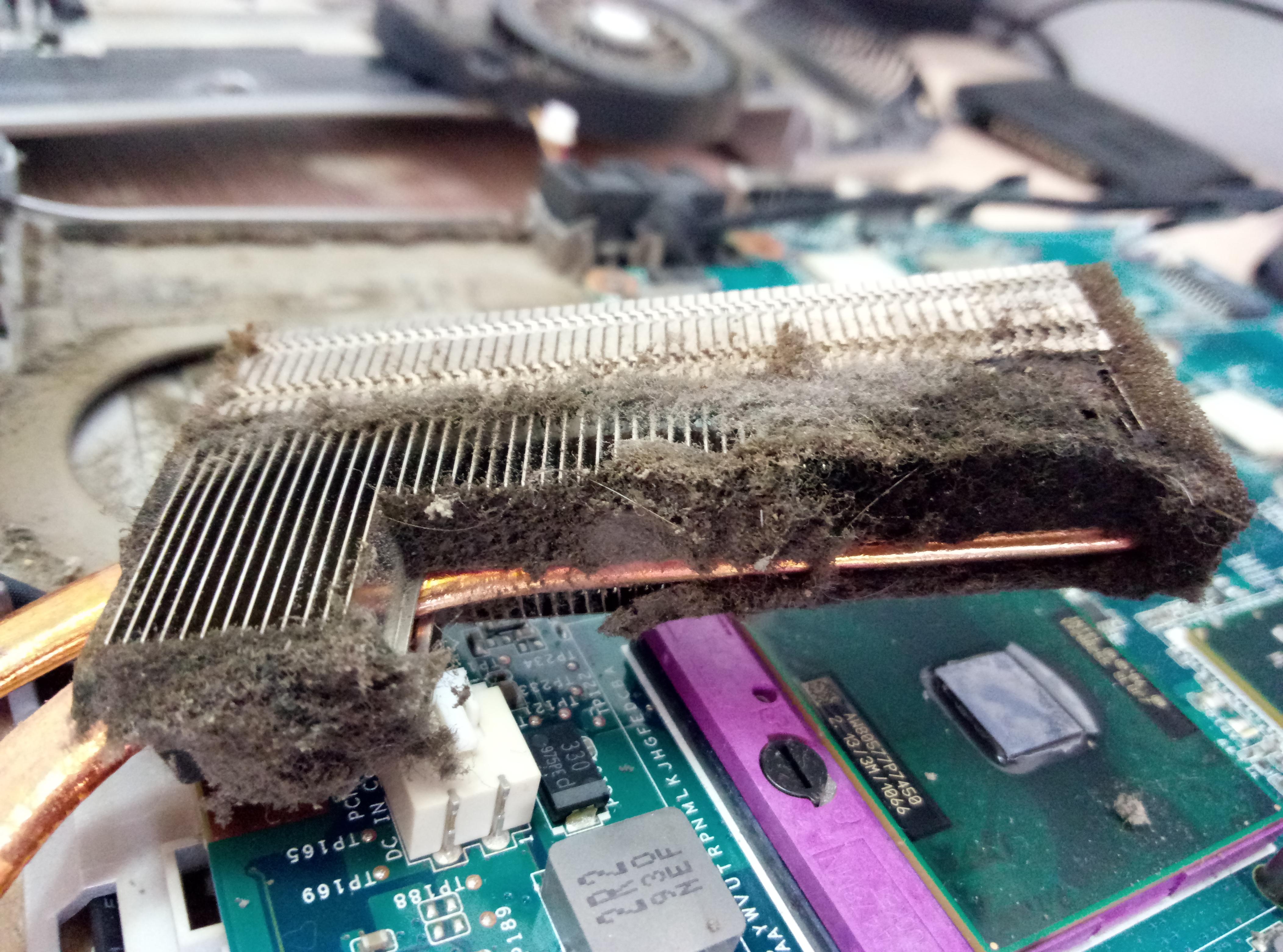 Как правильно почистить ноутбук от пыли в домашних условиях 388